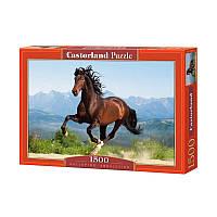"""Пазлы  1500 """"Лошадь""""   Castorland"""