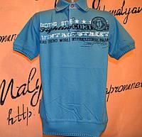 Детская футболка с воротником для мальчиков  Blueland