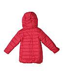 Коралловая демисезонная  курточка   для девочек от 1 до 4 лет, фото 3
