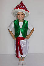Карнавальный костюм для мальчика Гриб Мухомор