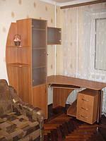 Компьютерный стол с пеналом для книг