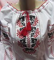 Купить стильную детскую вышиванку Калинка-2
