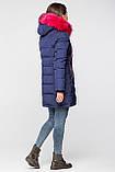 Яскравий молодіжний пуховик - парка Covily 17-09, синій з рожевим хутром, розмір XL, фото 3