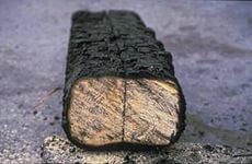 Огнезащитная вспучивающаяся грунт-краска «Синтего-Огнебор», для металлических конструкций - Предприятие со 100% иностранной инвестицией «ИнтерГазСинтез» в Луганской области
