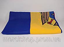 Флаг Молдовы - (Печать) - (1м*1.5м)