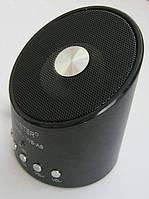Портативный плеер колонка WS-A9, фото 1