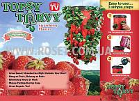 Плантатор для клубники подвесной - Topsy Turvy, фото 1