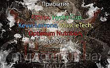 Поступление: FitMax, Hydra Cup, Kevin Levrone, MuscleTech, Optimum Nutrition, OstroVit.