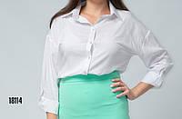 Блуза женская с длинным рукавом ,рубашка от бренда Adele Leroy