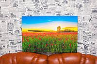 "Картина на холсте ""Маковое поле. Закат. Природа"". 60х40 см."
