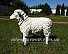 Садовая фигура Баран и Овца, фото 4