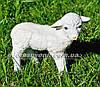 Садовая фигура Овцы, фото 4