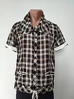 e57101dd898 Рубашка мужская летняя коттоновая брендовая высокого качества WEAWER
