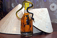 Лечебная настойка, на кобре и черном скорпионе. Стекло 630 ml. Пр-во Вьетнам.