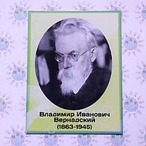Вернадский В. И. Портрет для кабинета химии