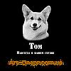 Табличка на могилу собаке., фото 6