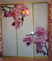 """Шкаф-купе """" Орхидея"""",система пол-потолок"""