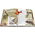 Елка. Новейшее издание для подарка в стихах и прозе, фото 9