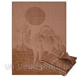 Верблюжі ковдри 170х205 см