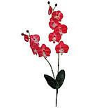 Орхидея искусственная фаленопсис  для заливки 73 см, фото 2