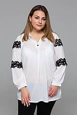 Белая нарядная блузка больших размеров Андреа, фото 3