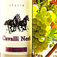 Белое полусладкое вино Cavalli Neri Bianco Italiano Semi Dolce