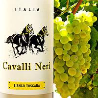 Белое сухое вино Cavalli Neri Bianco Toscana 2015 IGT
