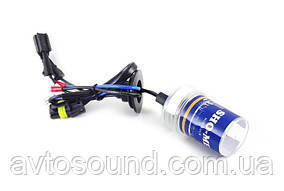 Ксеноновые лампы Sho-Me 35W (4300/5000/6000K)