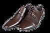 Мужские классические кожаные туфли  intershoes 15v066 коричневые   весенние