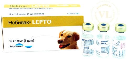 Вакцина nobivac lepto
