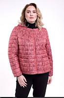 Куртка зі знімним капюшоном, з 48-64 розмір, фото 1