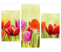 """Фотокартины на холсте из 3-х частей """"Тюльпаны"""""""
