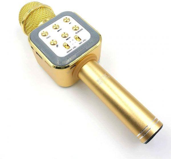 Беспроводной микрофон - караоке WS 1818 , фото 1