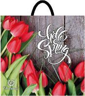 Пакет петля 33*37 Красные тюльпаны