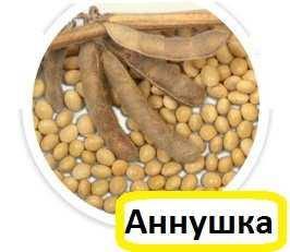 """Семена сои сорт """"Аннушка"""" (1р), фото 2"""
