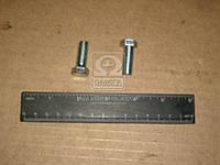 Болт М10х25 вентилятора ЗИЛ 130 (пр-во РААЗ)