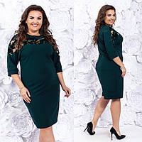 Платье БАТАЛ  вставка сетка в расцветках 730101