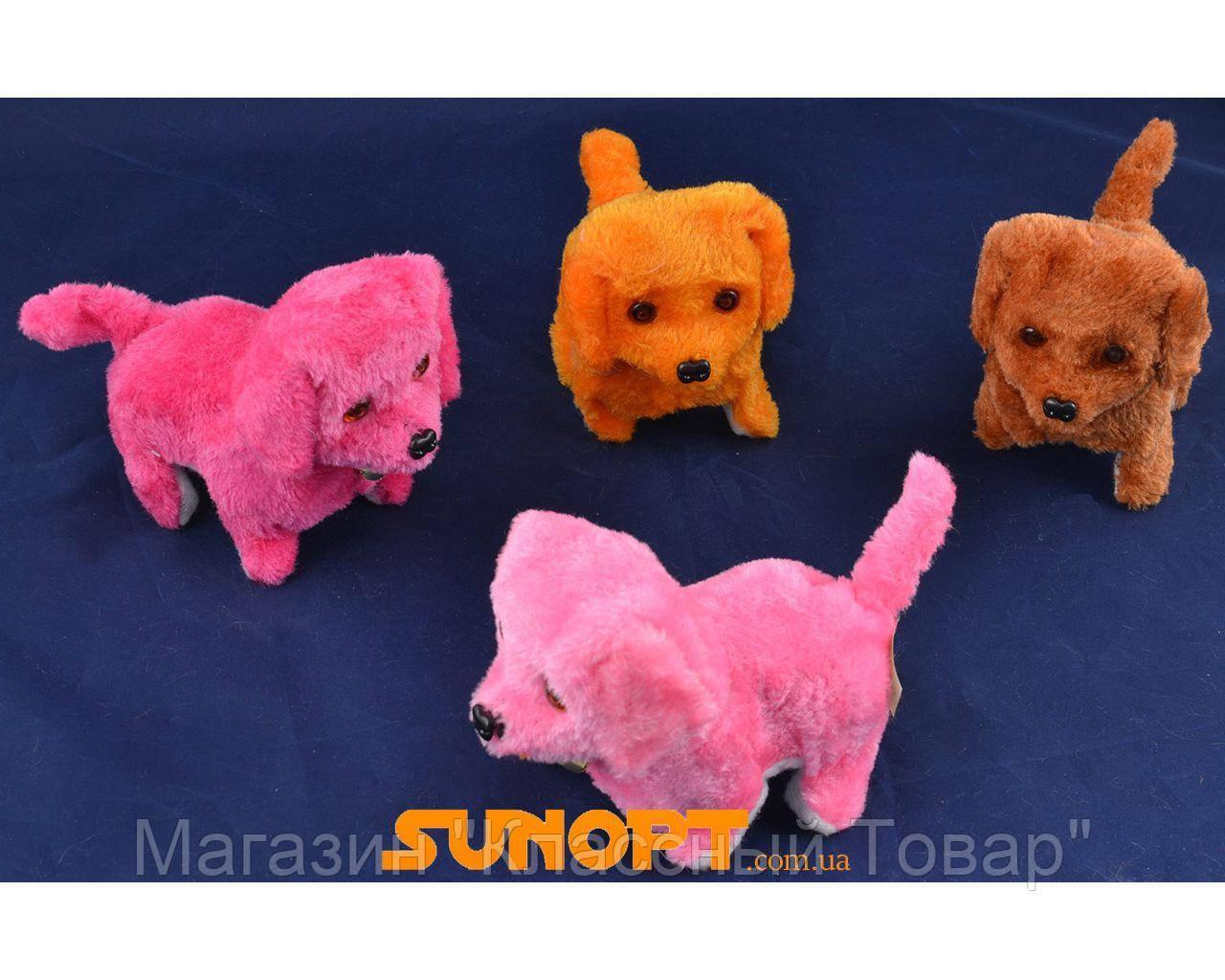 Мягкая игрушка Собачка (Механика) №535-10