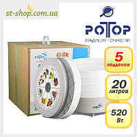 Электросушилка Ротор Дива на 20 л для фруктов и овощей, фото 1
