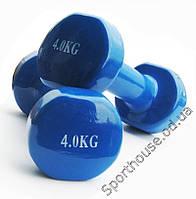 Гантели для фитнеса 4кг синий