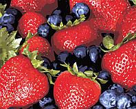 Художественный творческий набор, картина по номерам Сочные ягоды, 50x40 см, «Art Story» (AS0466), фото 1