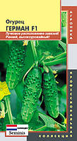 Семена огурцов Огурец Герман F1 5 штук  (Плазменные семена)