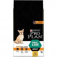 Сухой корм для собак Pro Plan (Про План) Small & Mini 700г с курицей для  взрослых собак мелких пород