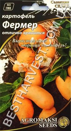 Семена картофеля «Фермер» 0.01 г, фото 2