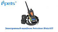 Электронный ошейник Petrainer iPets 617, фото 2