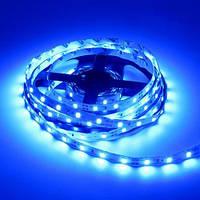 Світлодіодна стрічка 2835-60led-8mm-12V, IP20 синій бухта 5м