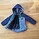 Демисезонная куртка мальчик 3 - 7 лет, есть замеры 98,110,116, фото 4