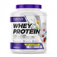 Сывороточный протеин OstroVit - Whey Protein (2000 грамм)