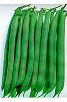 Спаржевая фасоль НАГАНО / NAGANO - 100 000 шт. Nunhems