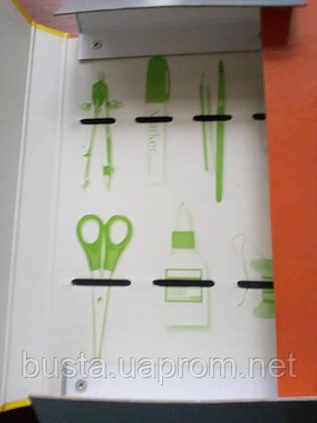 Папка для труда на резинке А4 Olli, фото 2